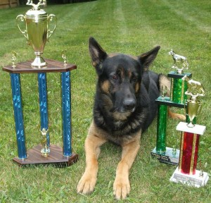 Lenny showing off his trophies