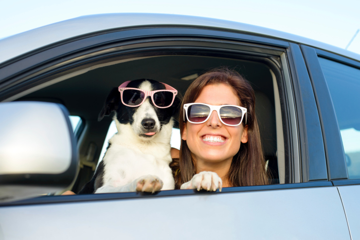 Dog and girl in car