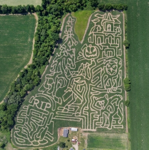 Coleman's Corn maze for 2014. (Click for larger view)