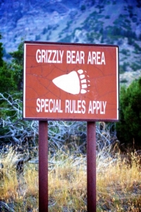 grizzly-bear-warning-sign