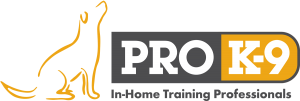 ProK9 logo