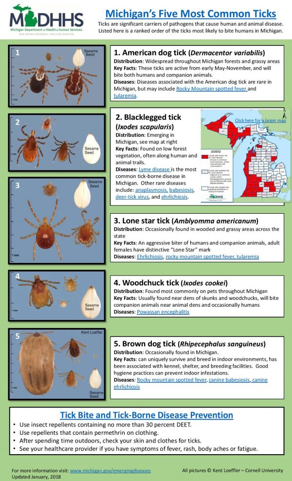 ticks are on the rise in Michigan
